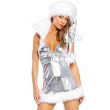 Kerstpakje - Zilveren kerstpakje UITVERKOCHT